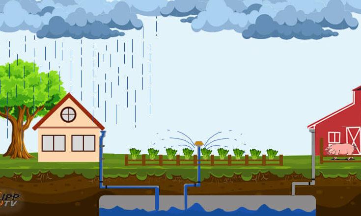 Rainwater Collection in Metro Manila